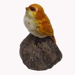 Vogeltje (zittend op steen)