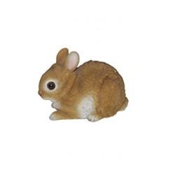 Baby konijn (bruin)