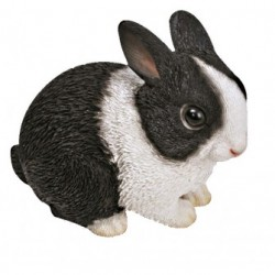 Baby zwart/wit konijn (Hollander)