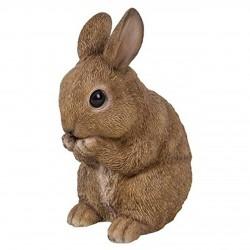 Baby (rechtop) zittend konijn (bruin)
