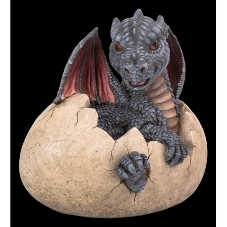 Baby (grijze) draak uit een ei