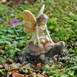 Schildpadden race