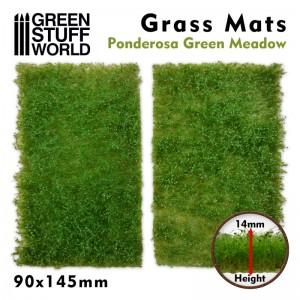 Grasmat groen bosgrond